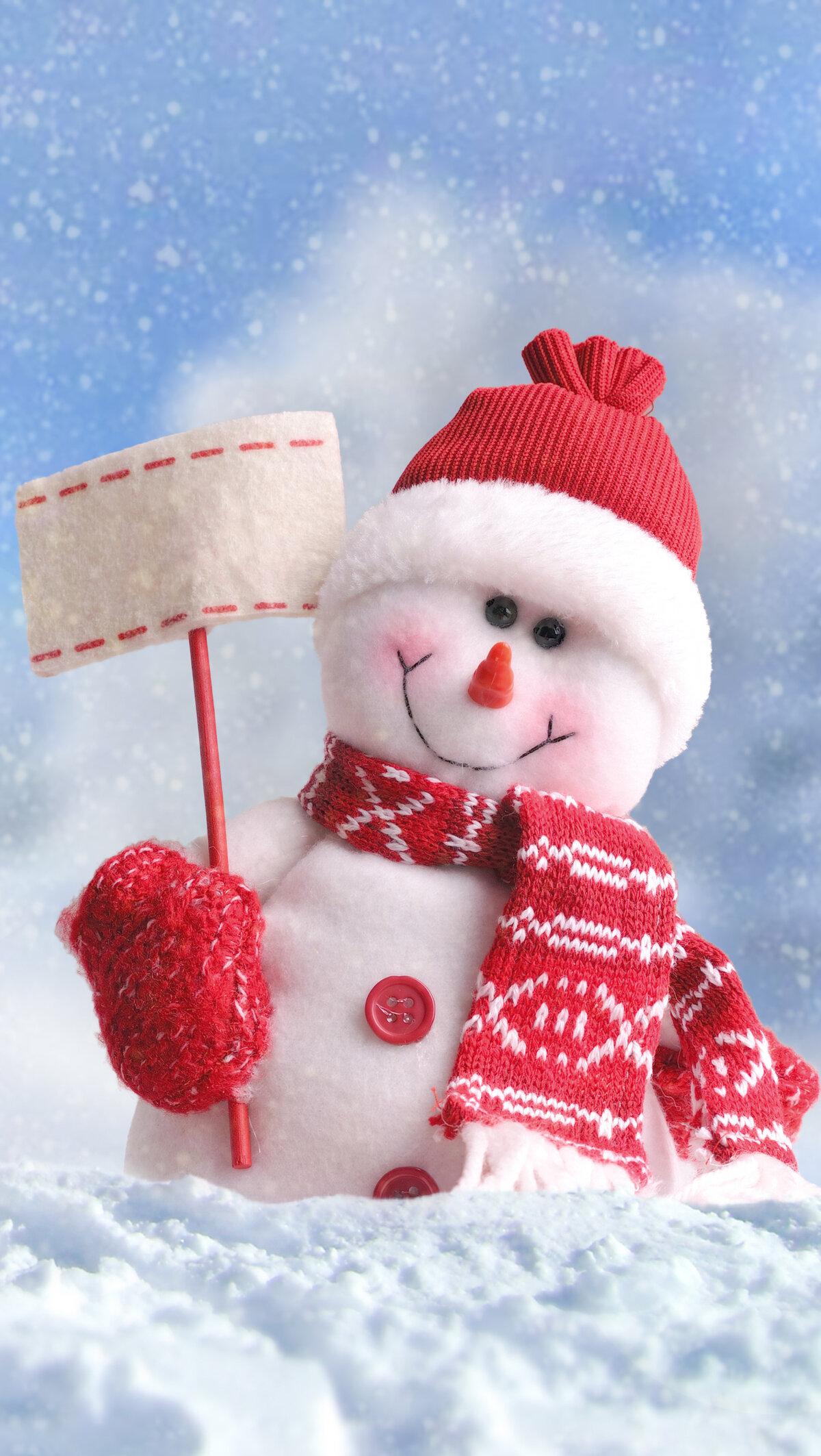 вправе снеговик на аву картинки состоянии