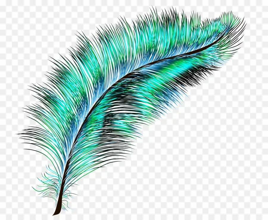 Анимации с картинками перья