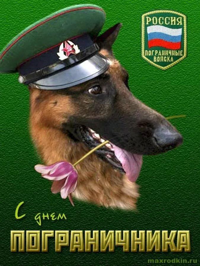 Поздравления пограничникам открытка