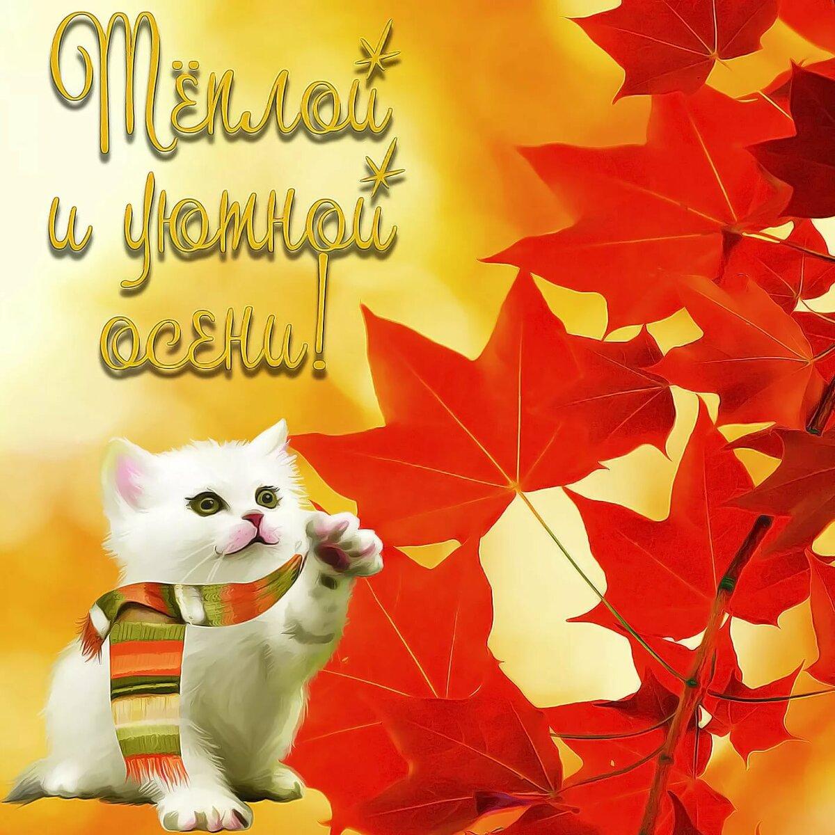 утилиты, красивые картинки октября с пожеланиями тех пор прошло