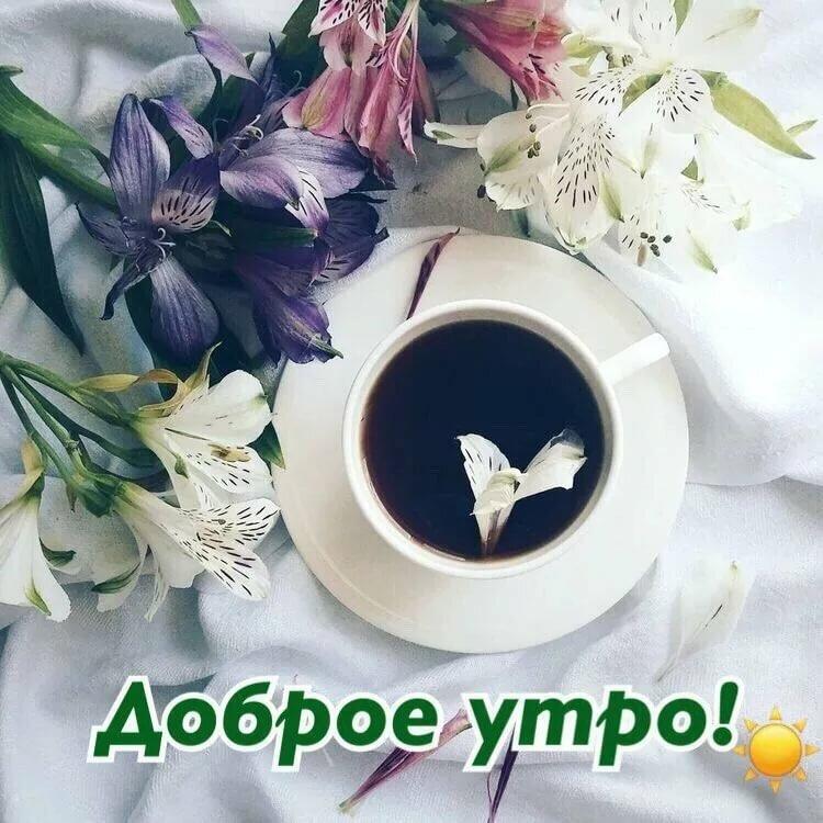 Божьей помощи, доброе утро в вк картинки