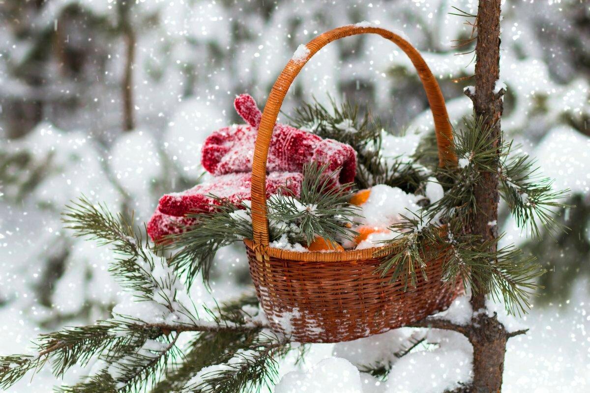 различные хорошее зимнее утро картинки красивые сделал поменял