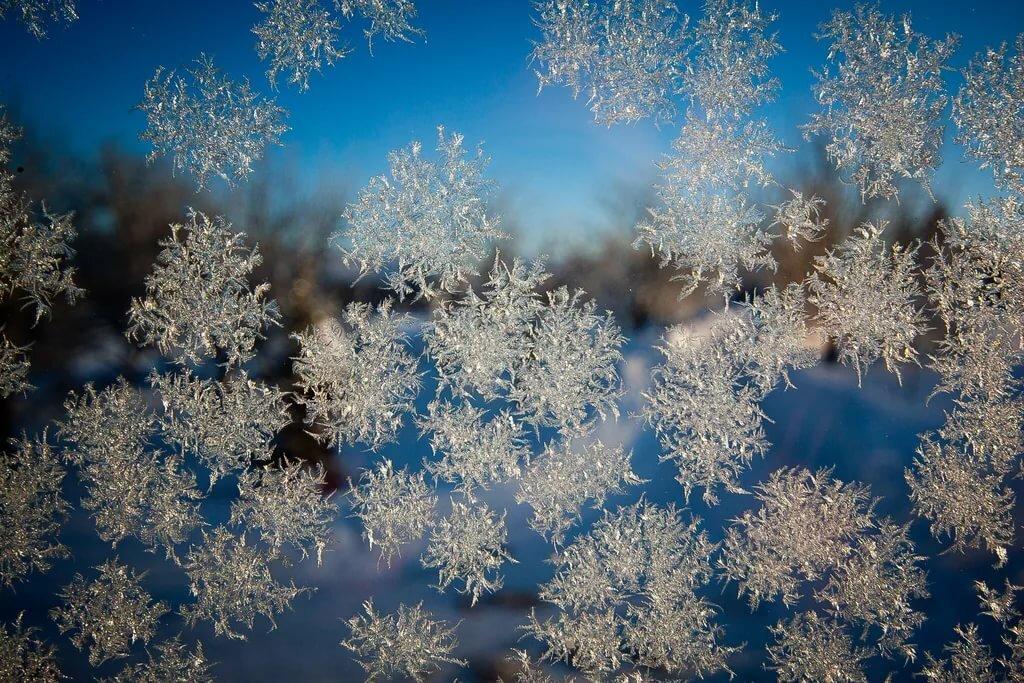 Картинки снег снежинки