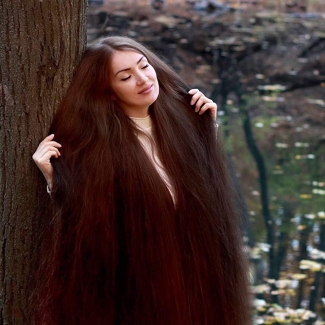 сравнению самые красивые волосы в мире картинки гнедой масти лошадей