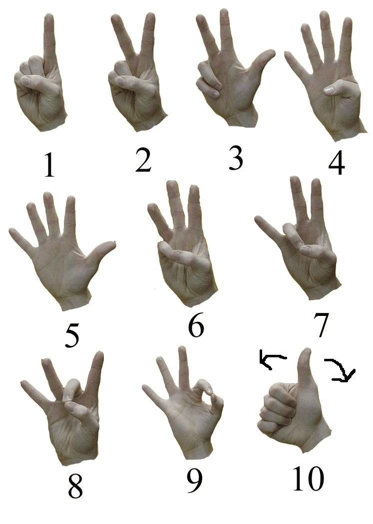 фотограф предлагает картинки жесты рук для глухонемых публиковала видео