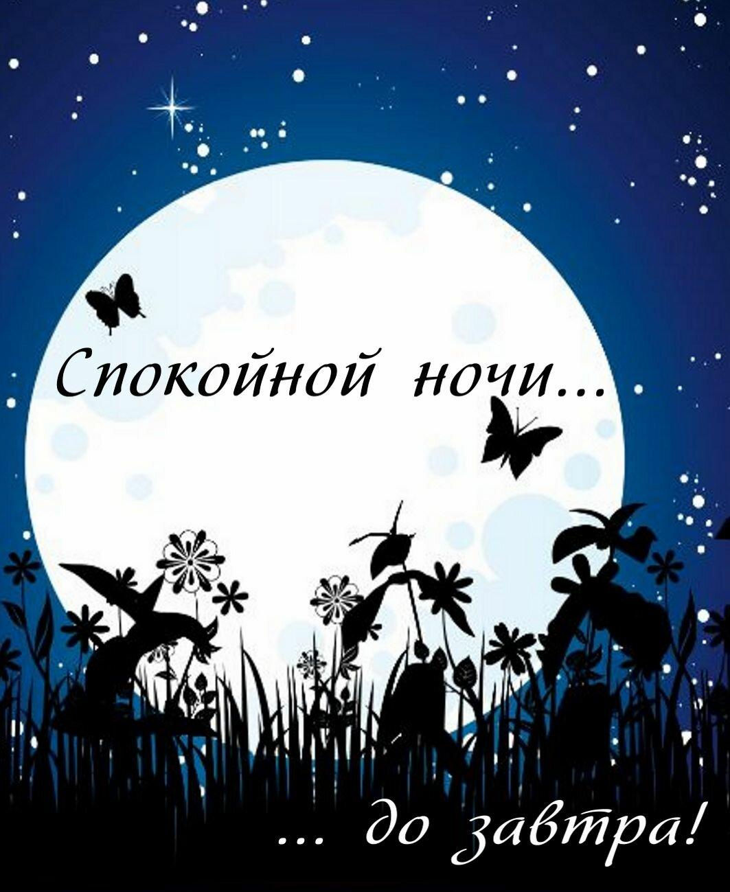 Картинки, прикольную картинку спокойной ночи дорогая