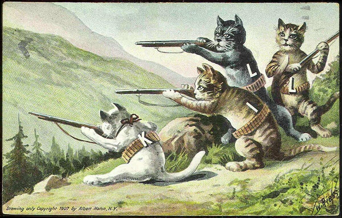 коты бойцы картинки лук анчоусы