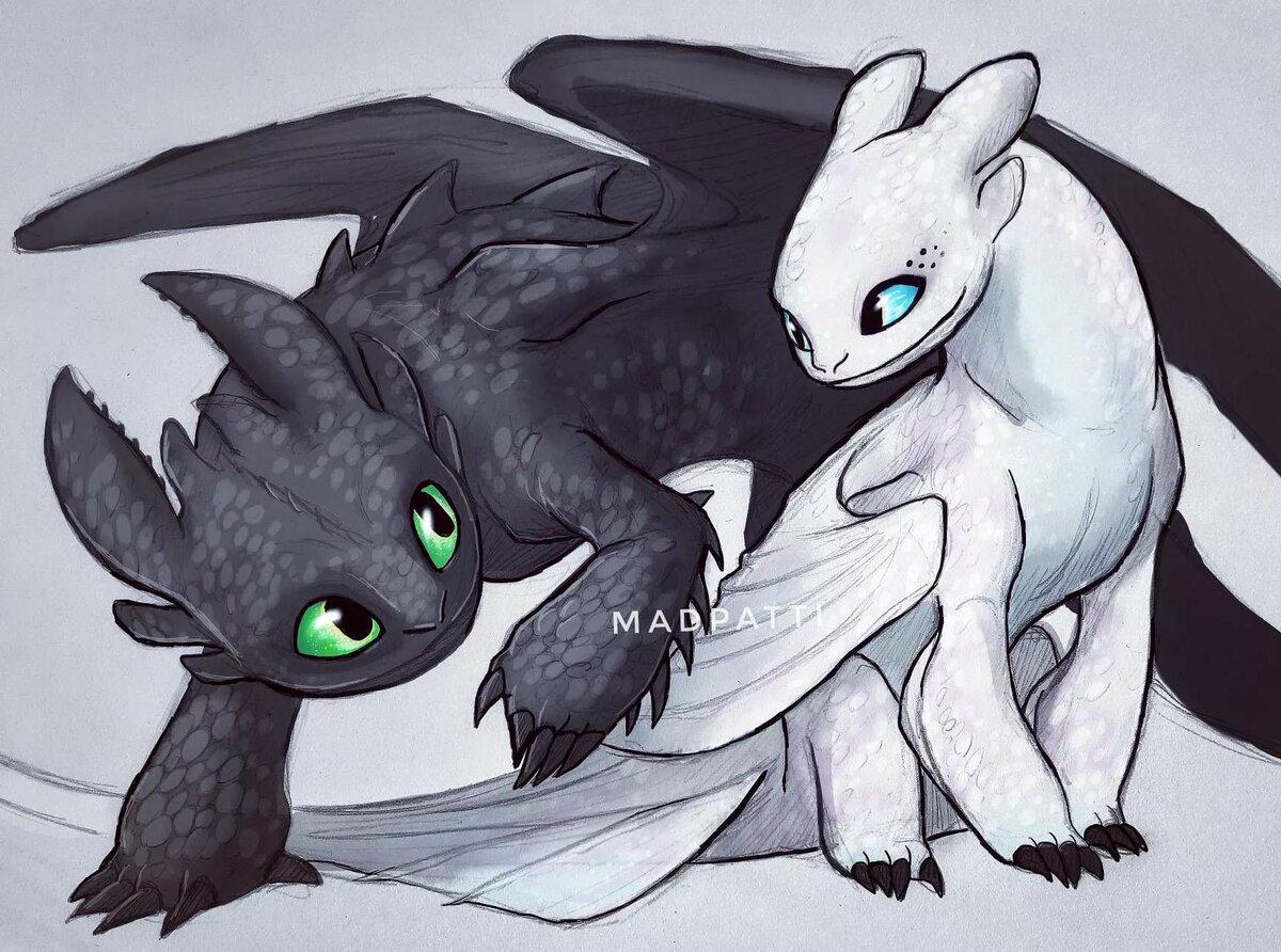 Картинки как приручить дракона ночные фурии