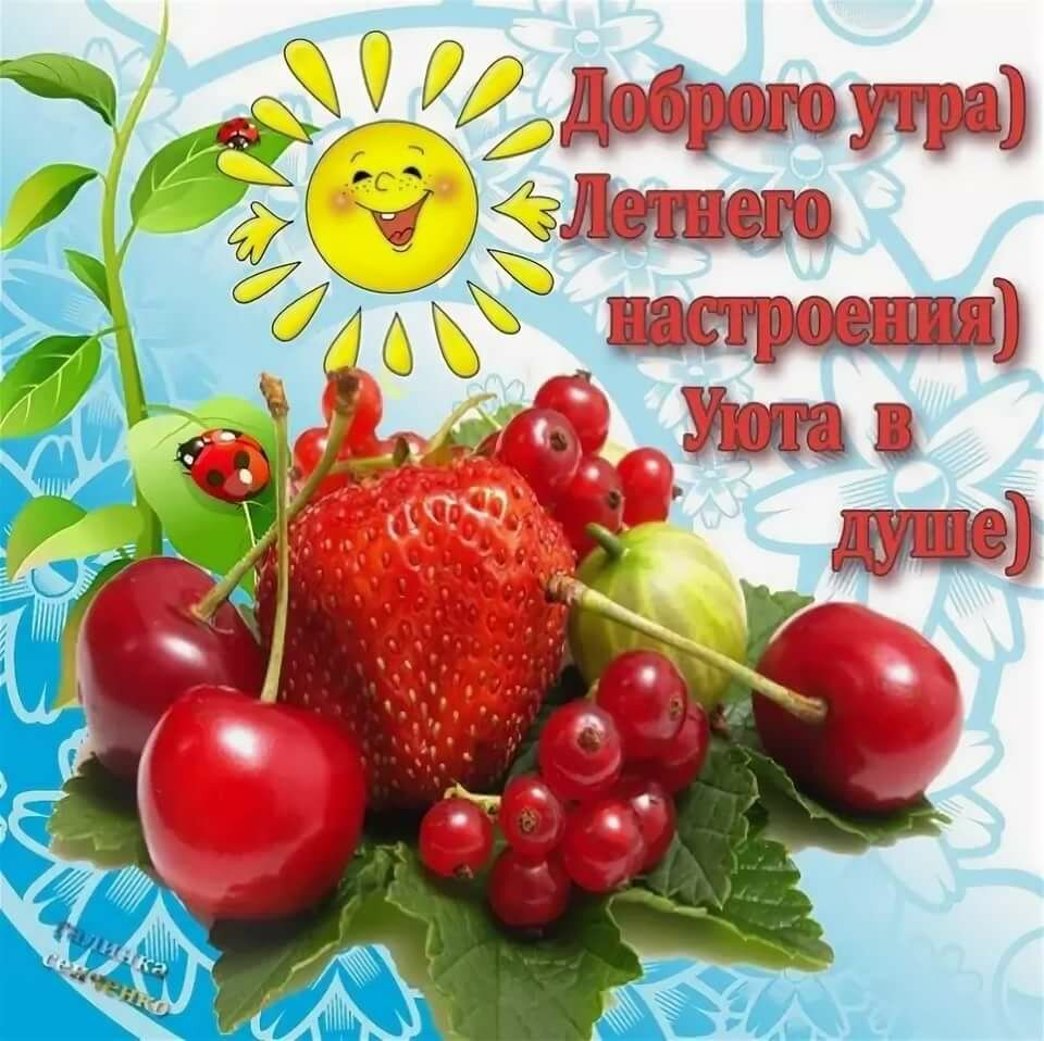 Форме цветка, красивые летние открытки с добрым утром и хорошего дня