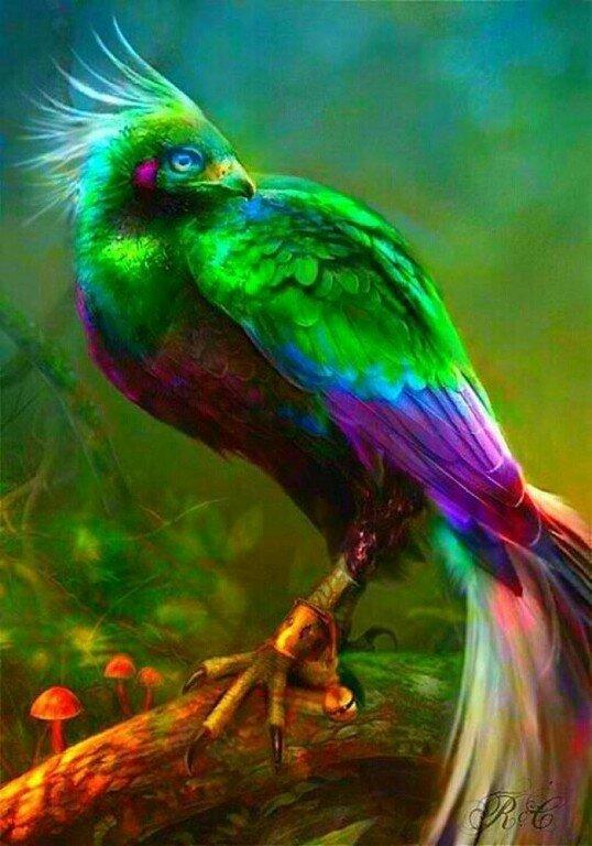фантастические птицы арт стала победительницей