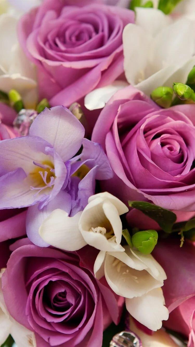 Открытку, красивый букет роз картинки вертикальные