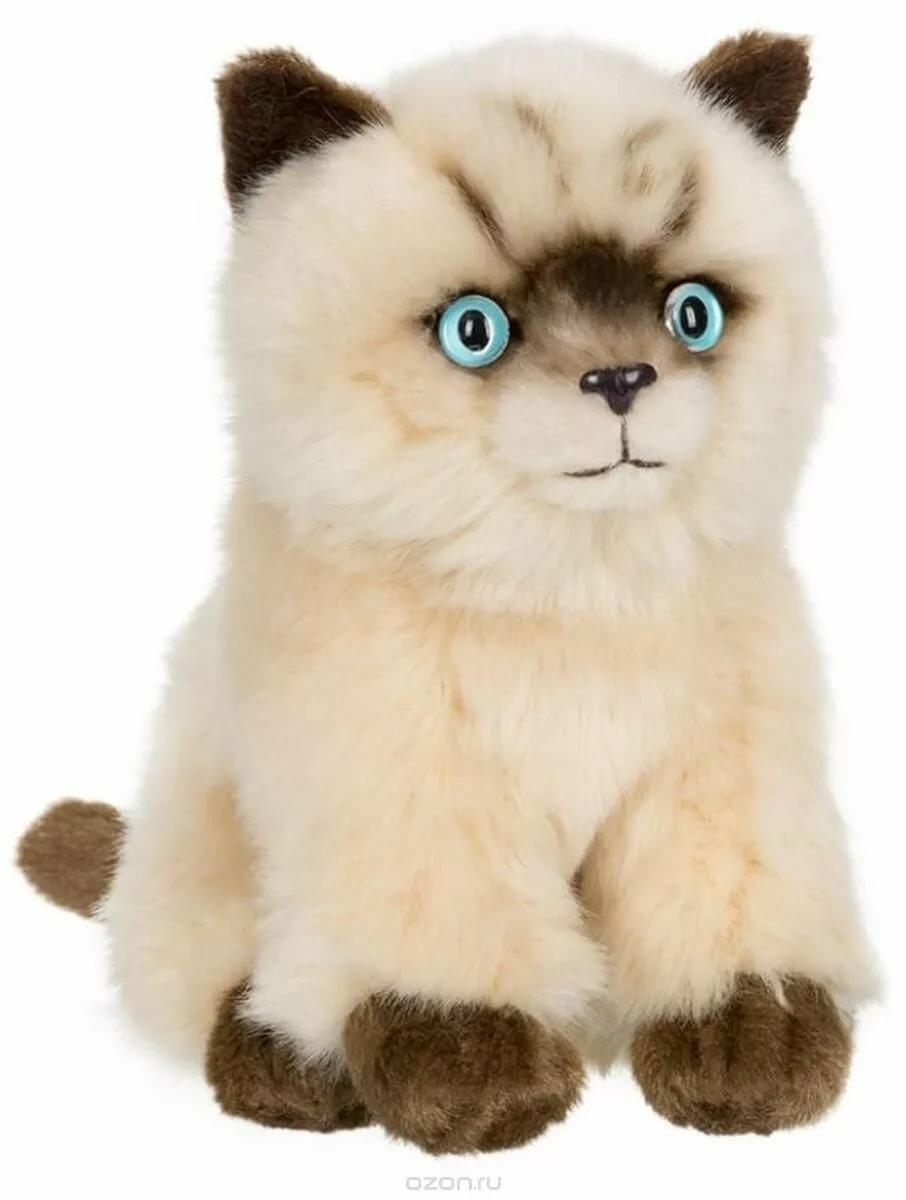 эту картинки игрушки кошки большие очень сильно