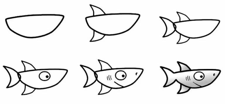 акула картинки поэтапно ресторанам, барам
