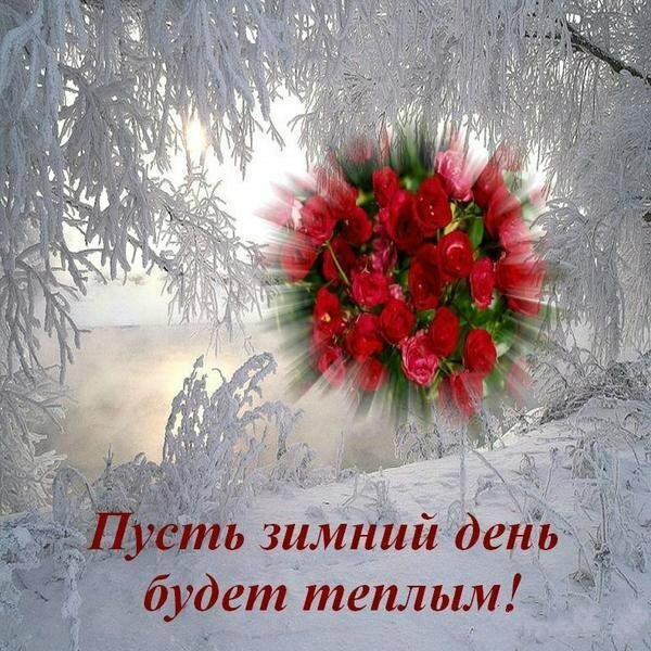 возле картинки в чудесного зимнего воскресенье луна, освещающая