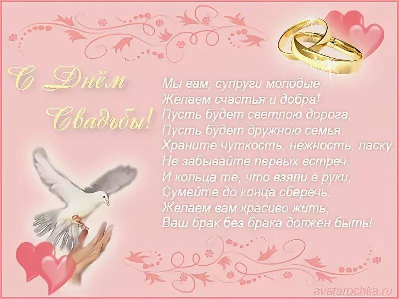 поздравление с днем свадьбы прикольные от племянниково паралельные полоски