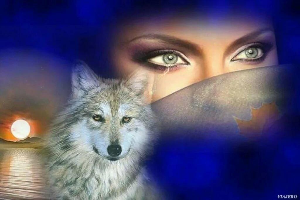 Картинки взгляд женщины волком