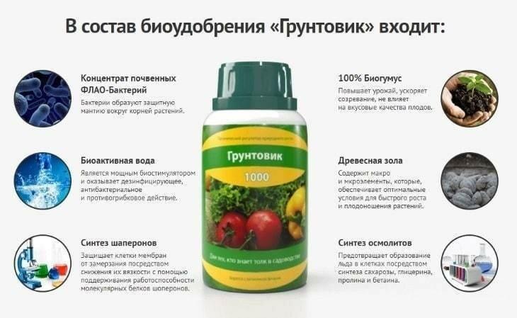 Биоудобрение Грунтовик-1000 в Сургуте