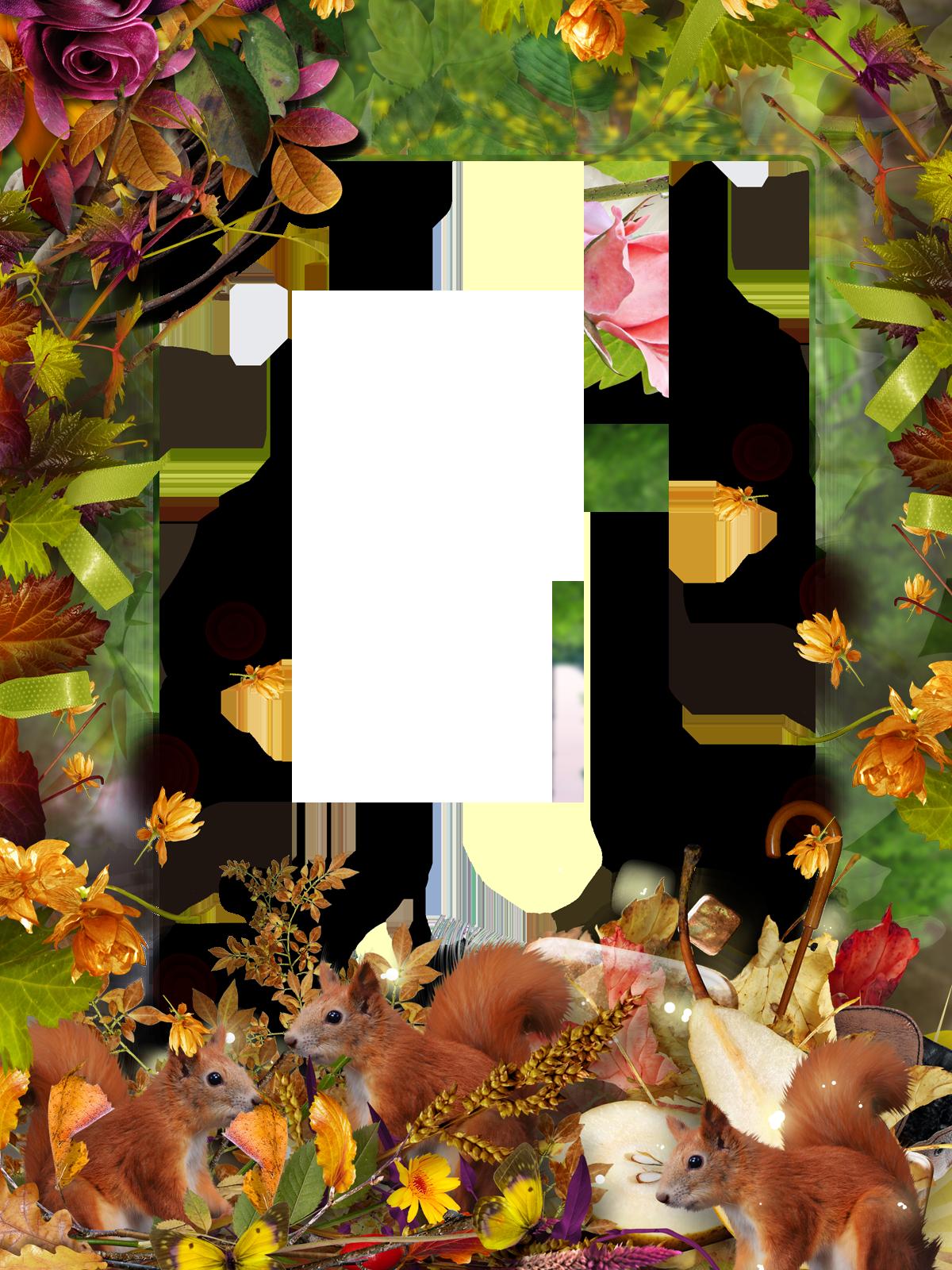 Осенние фоторамки в картинках