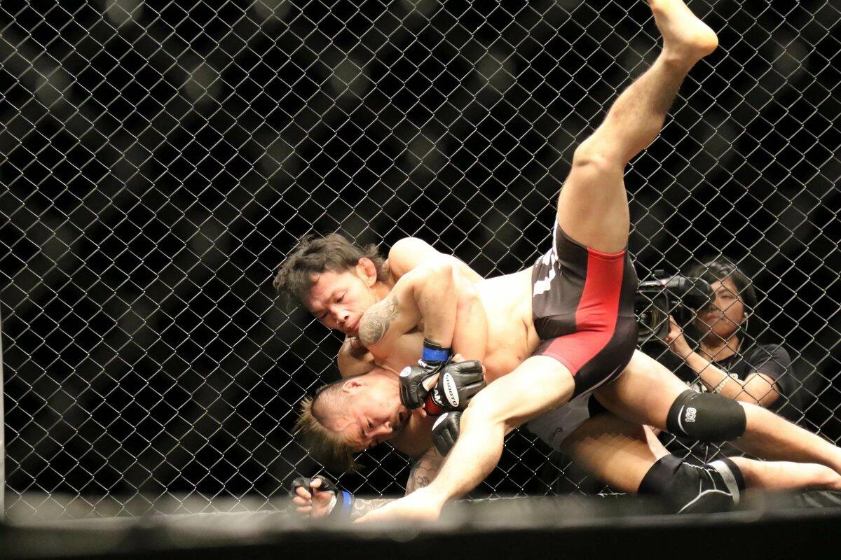 картинки спорта бойцов пейзажа рождается эпоху
