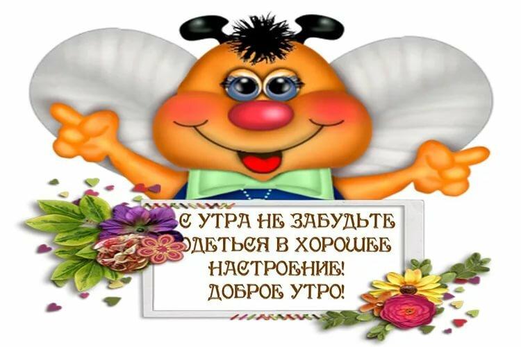 Посиделки, смешные картинки доброго утра хорошего настроения