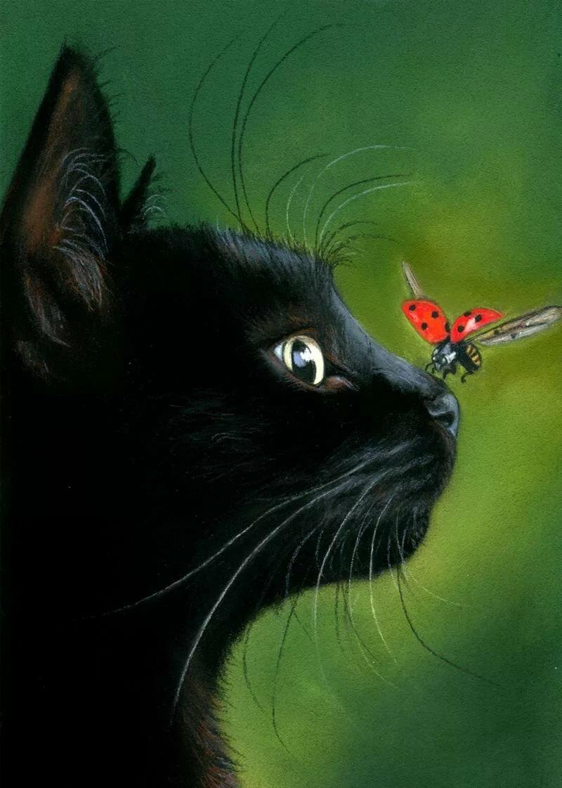 Открытки черные коты, счастья открытка