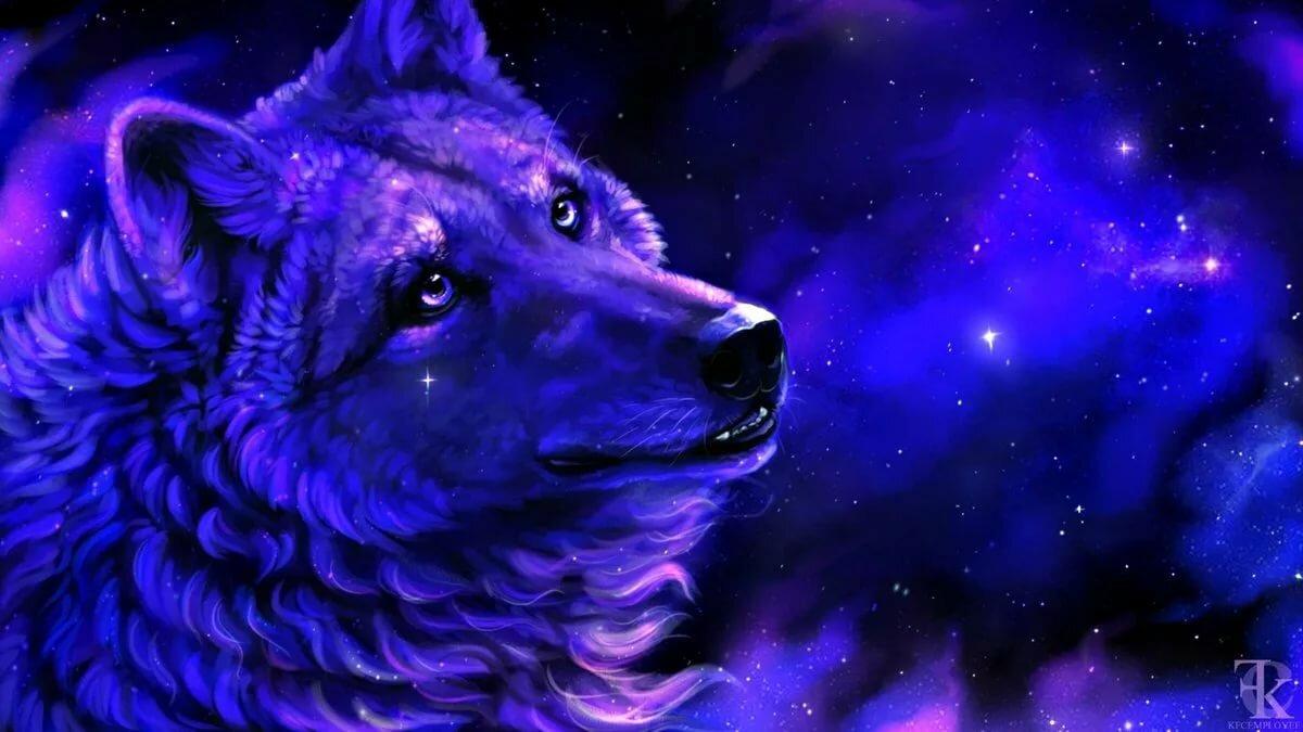 Волки космос картинки
