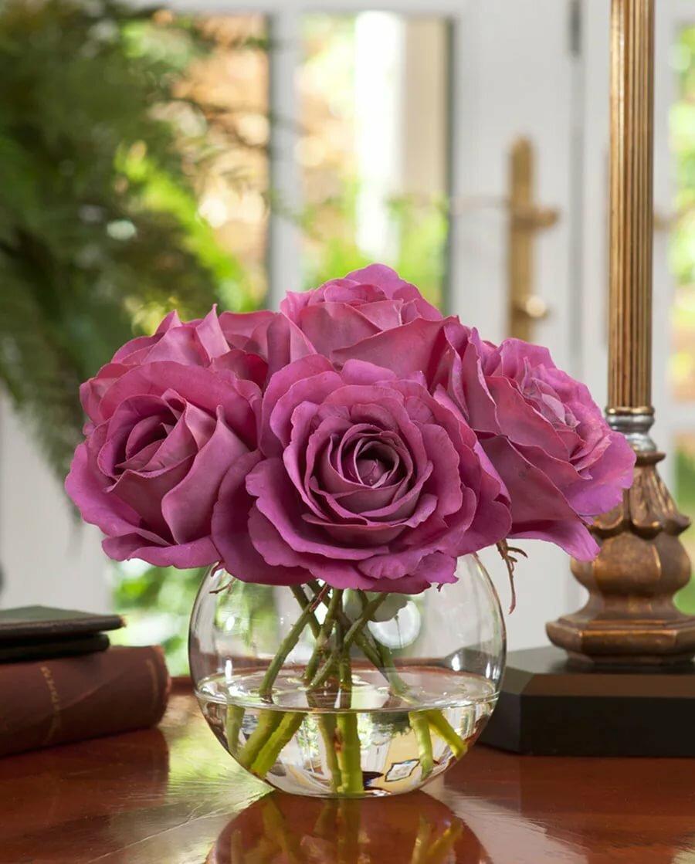 Картинка роза цветок для домашних