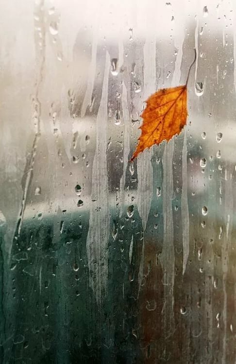 Открытки анимации дожди