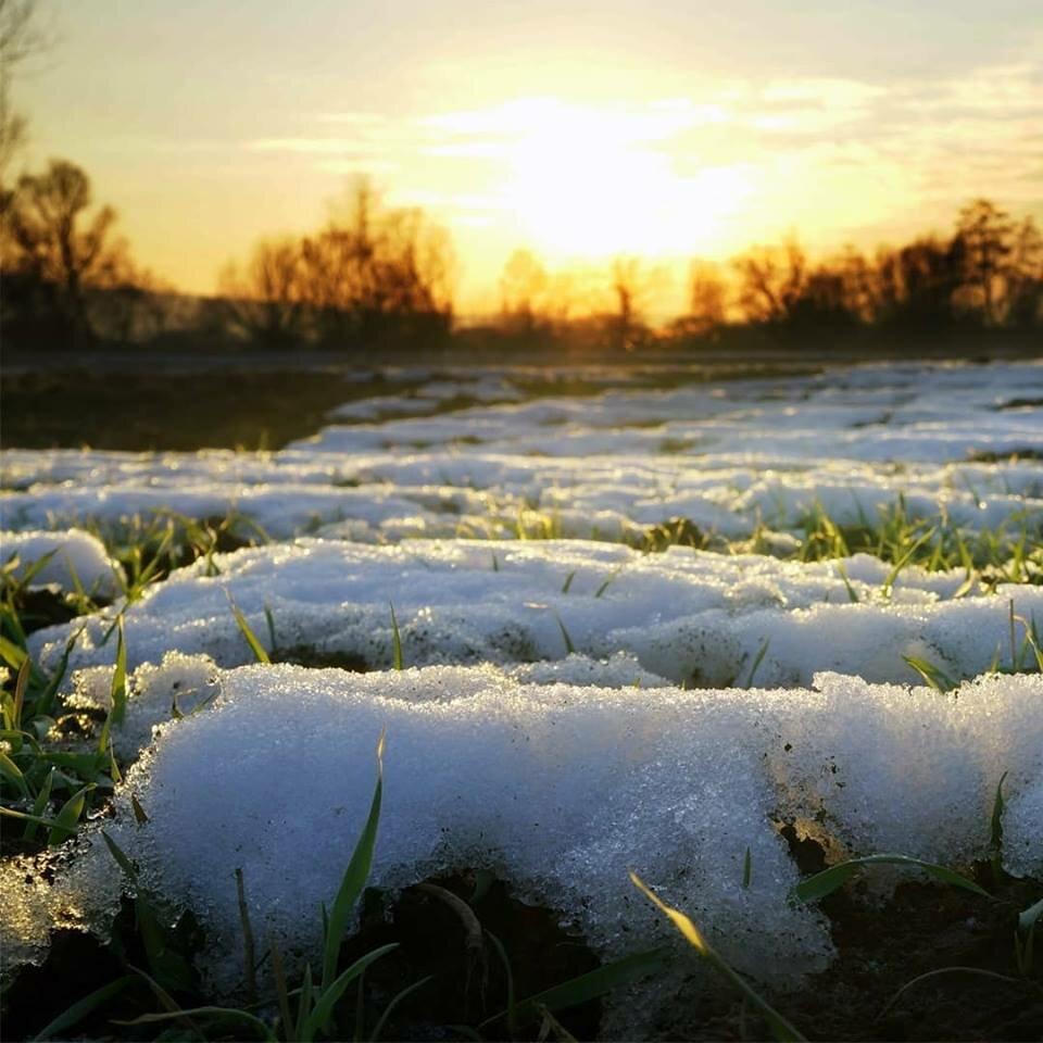 изобилует весенний снег картинки ютубе может только