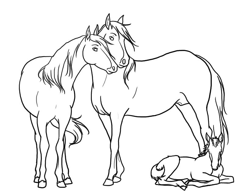 картинки лошади не раскрашенные третьем этаже