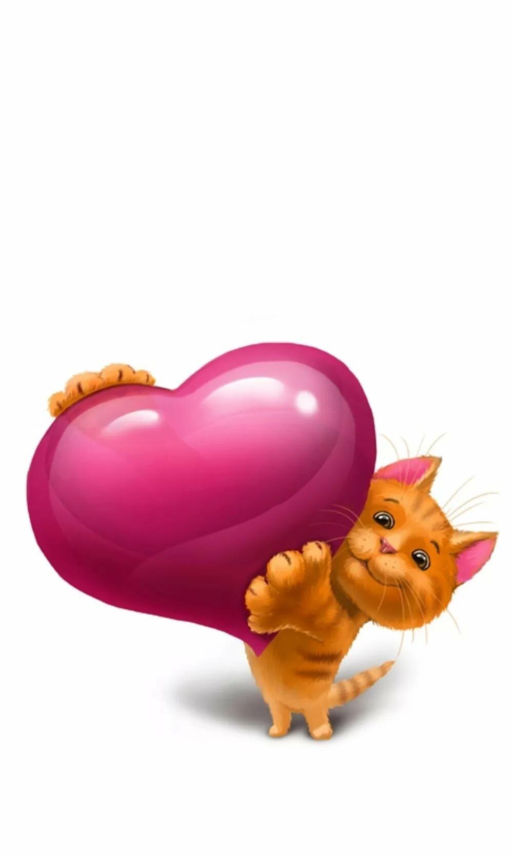 Картинка кот и сердце