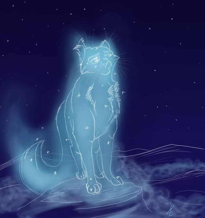 Коты воители картинки самые красивые звездное племя
