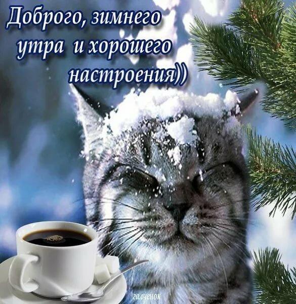 Зимние красивые картинки с добрым утром