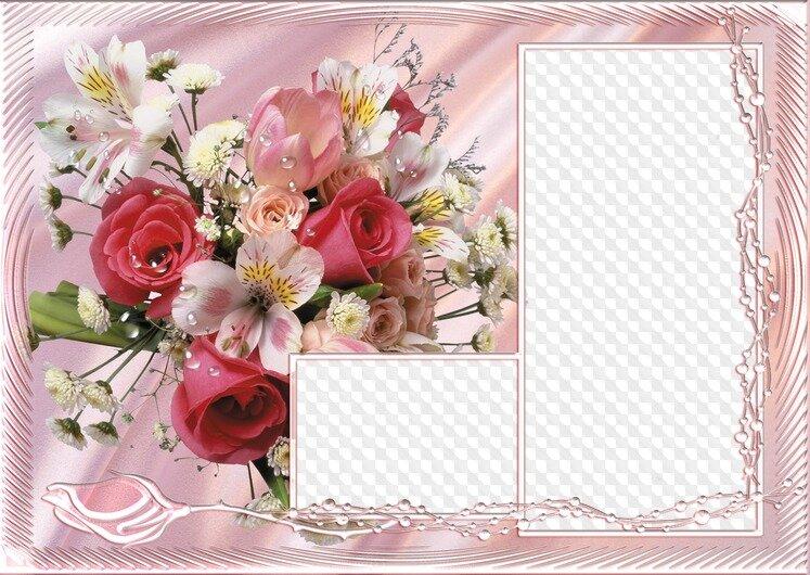 промойте, нарежьте шаблоны для открыток и фото вариант строго для