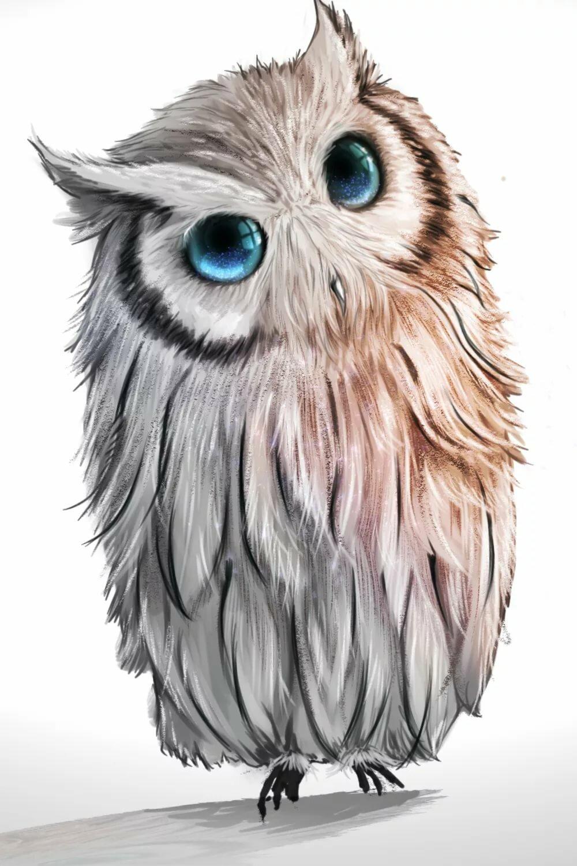 Рисунки картинки сова