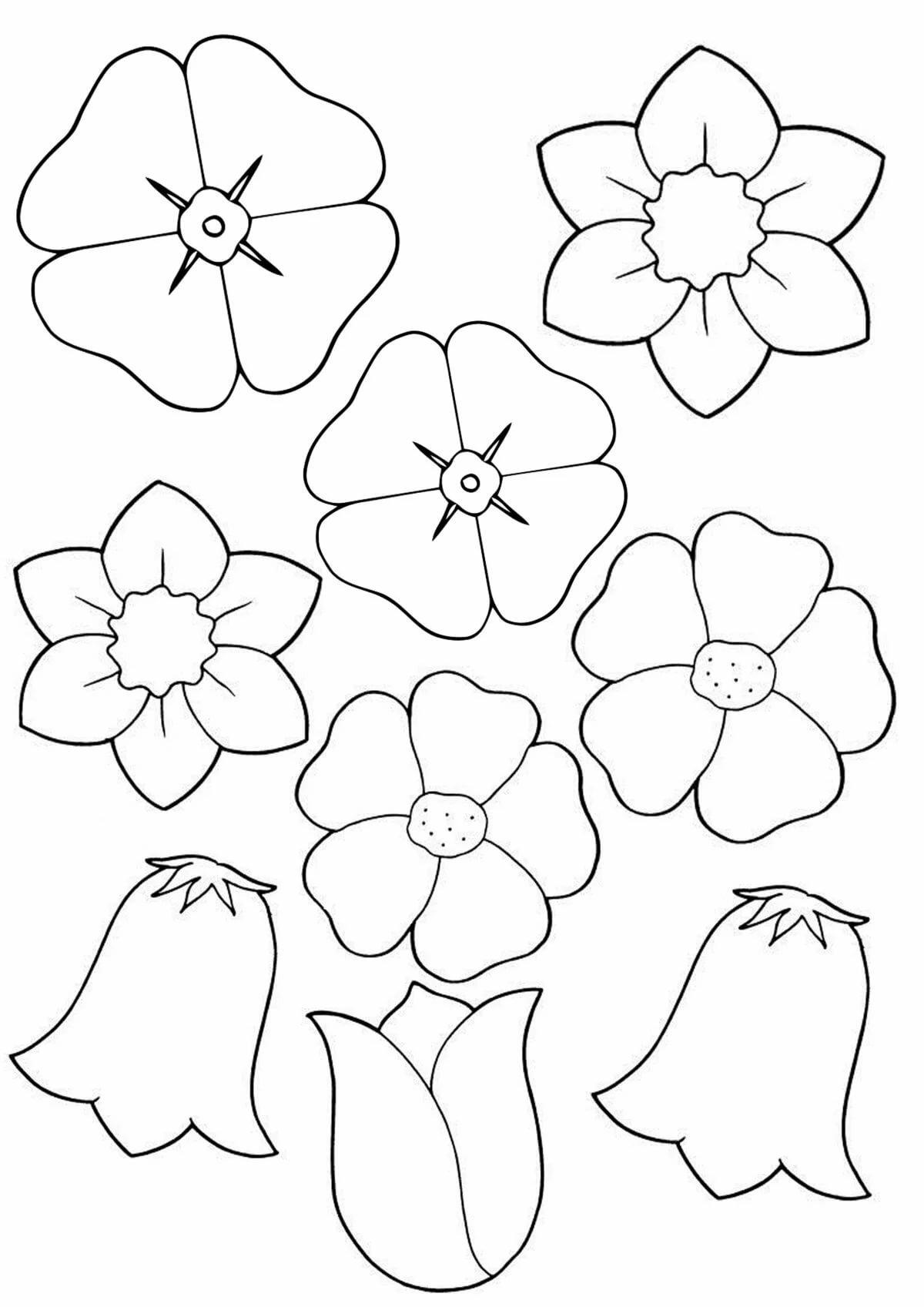 Цветы картинки шаблон