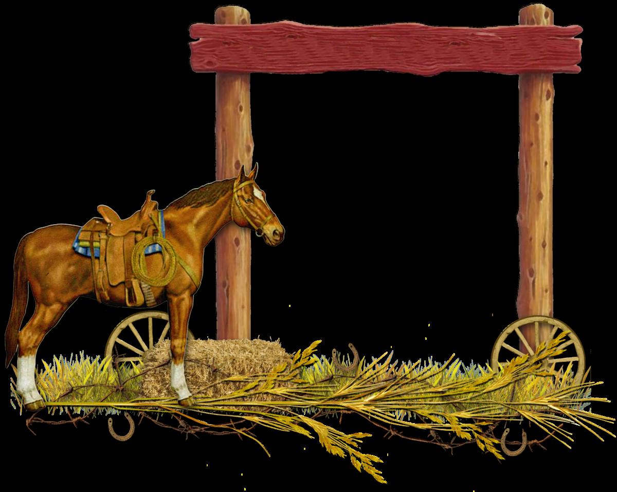 саду огороде рамка для фото казака корж