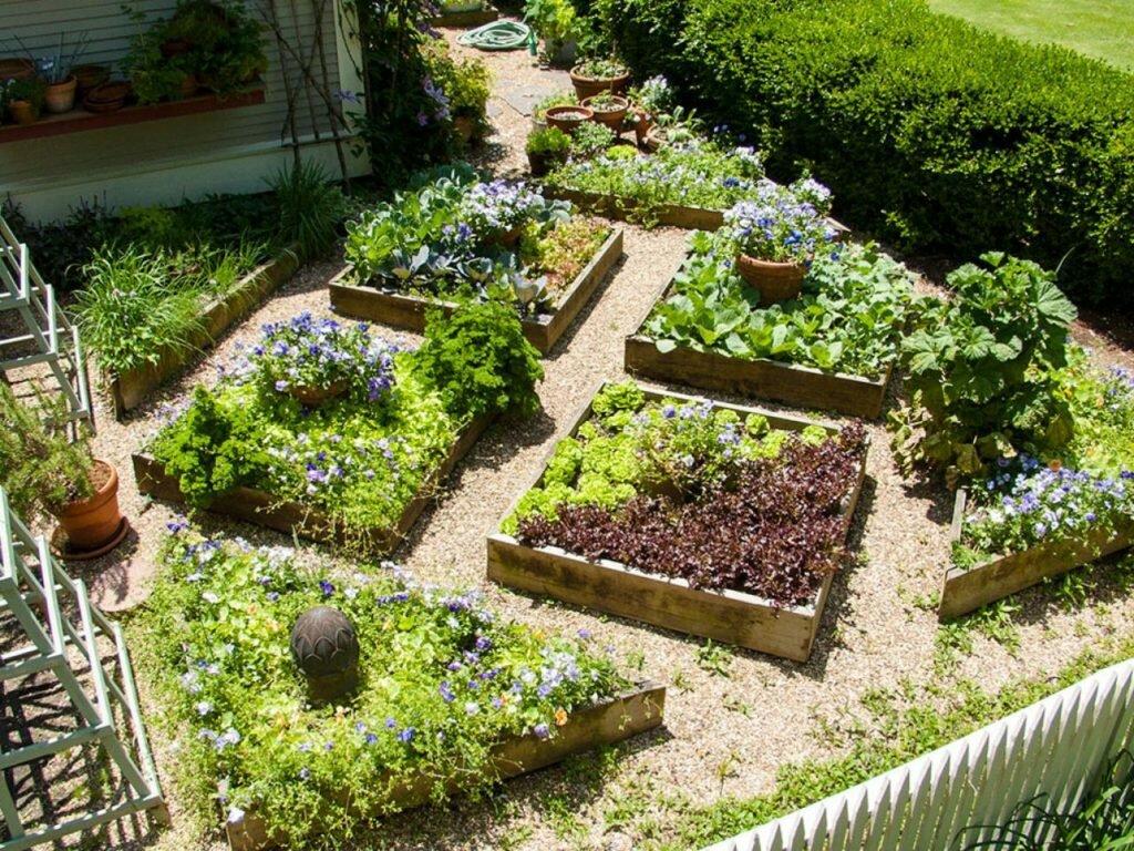 Дизайн огорода и сада своими руками фото каждая сторона