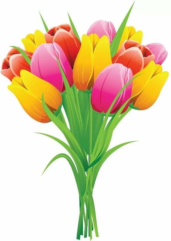 Букет тюльпанов картинки для детей, картинки