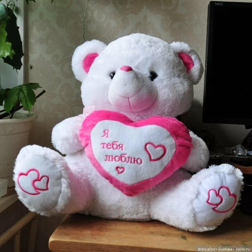 Картинки про, медведь с надписью я тебя люблю картинки