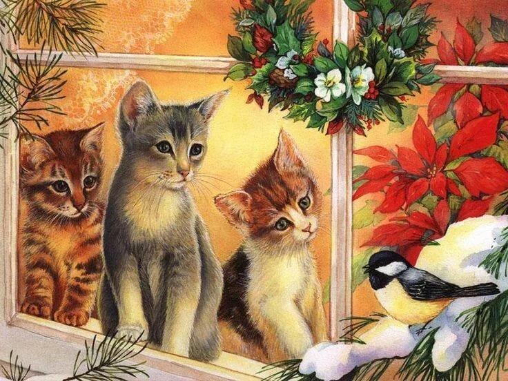 С рождеством открытки котики, доброе утро смешные