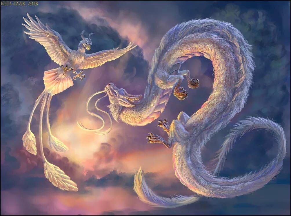 люди, феникс с драконом в картинках вот
