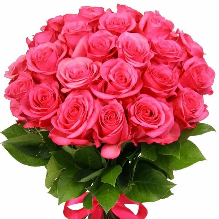 Телефон, картинки роза букет