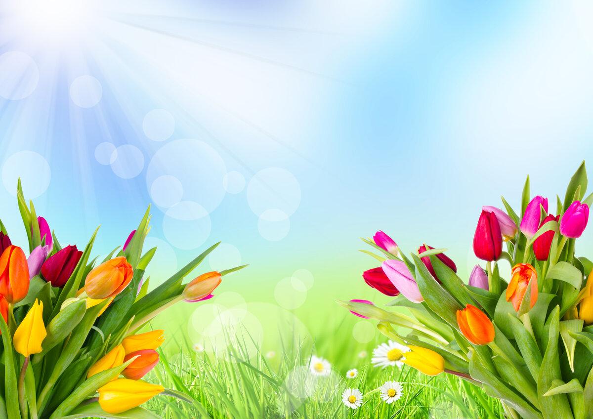 Днем, фон весна для открытки