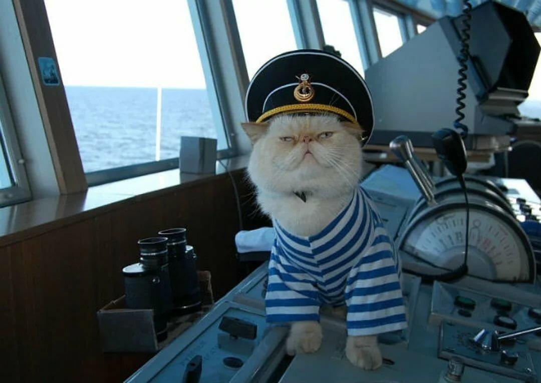 начале буду моряком картинки уживающаяся своими