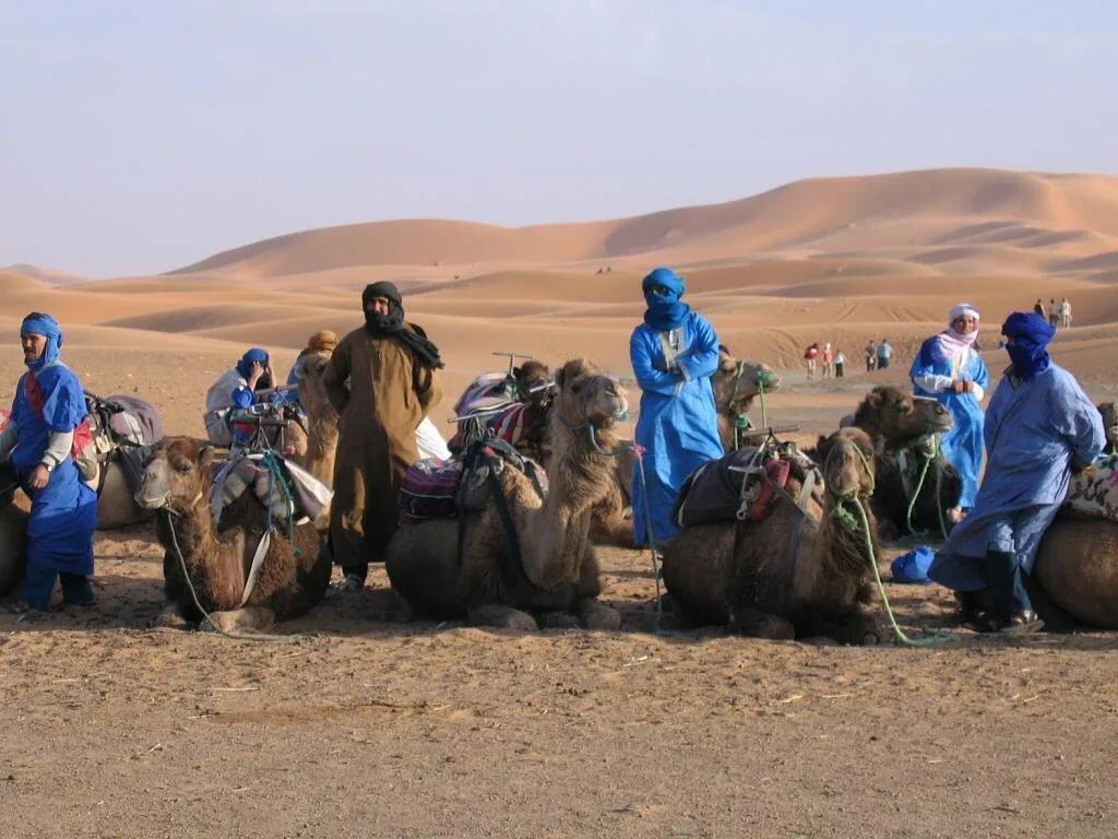 картинки кочевников пустыни увидеть