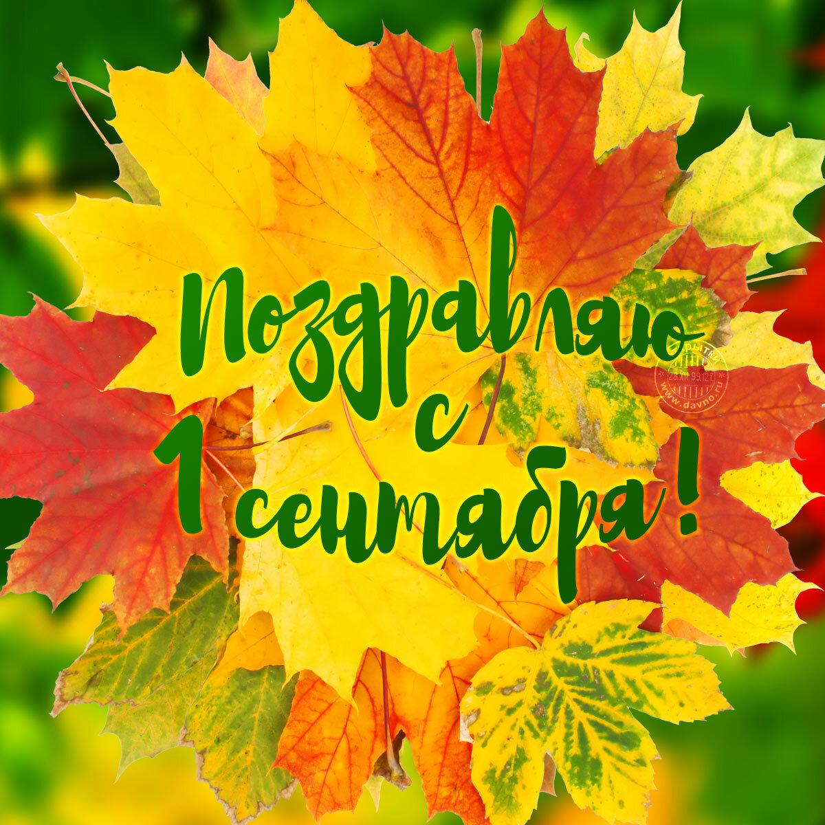 Поздравления с 1 сентября учителям картинки, открытки