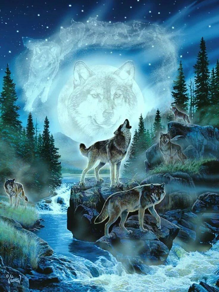 Живые картинки с волками