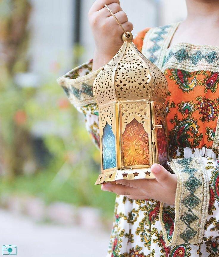 профессиональные фотографии рамадан морды животных лицо