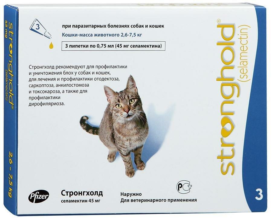 внешней стронгхолд для котят картинки клинику, никто может